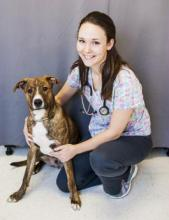 Director of Medical Personnel, Licensed Veterinary Technician - Melody, L.V.T.